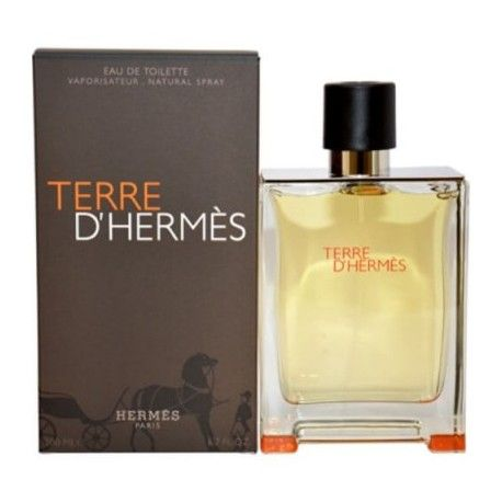 HERMES TERRE D'HERMES EDT 100 ML REGULAR