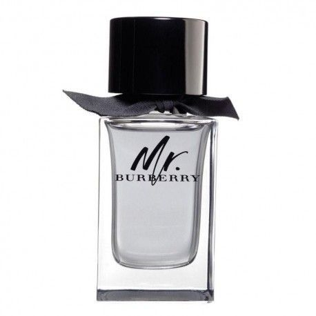 TST BURBERRY MR. BURBERRY EDT 100 ML